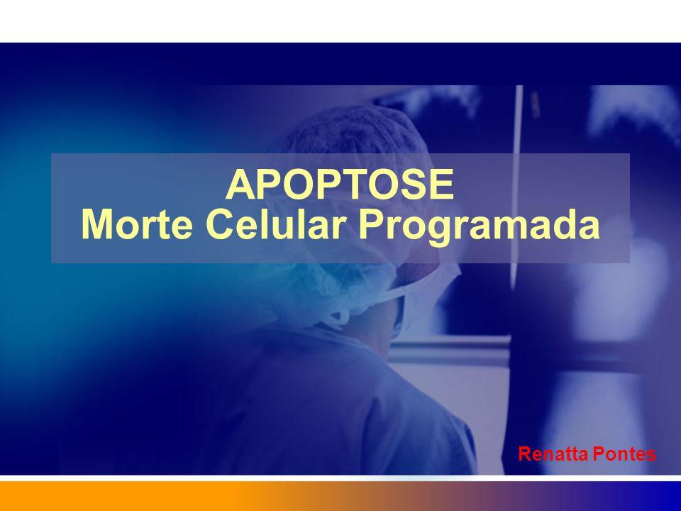 APOPTOSE Morte Celular Programada Renatta Pontes