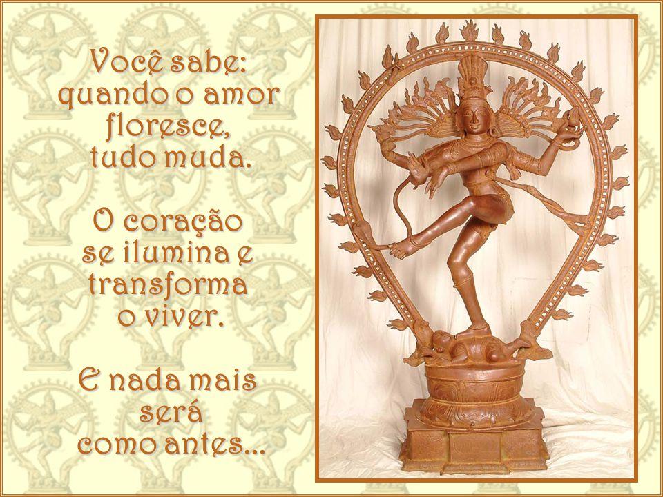 Dance, como Shiva, no universo.Celebre a vida. Cada dia é chance de recomeço.