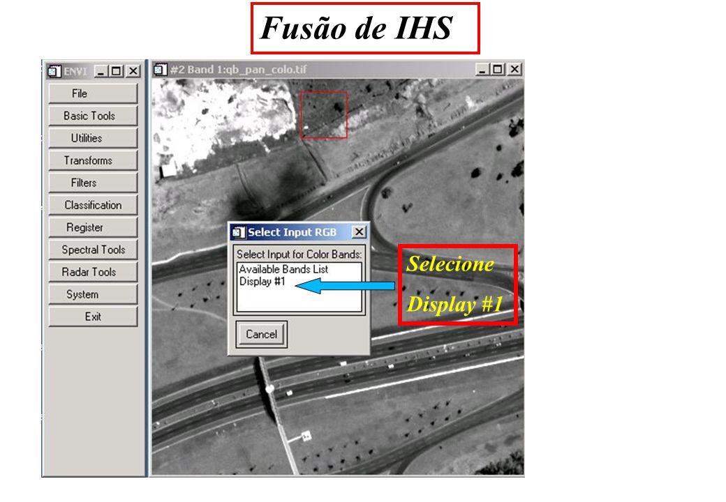 Fusão de IHS Selecione Display #1