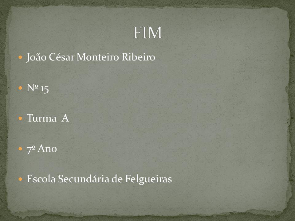 João César Monteiro Ribeiro Nº 15 Turma A 7º Ano Escola Secundária de Felgueiras