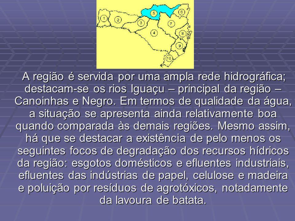 É a região que apresenta a maior área física e a menor densidade demográfica do estado.