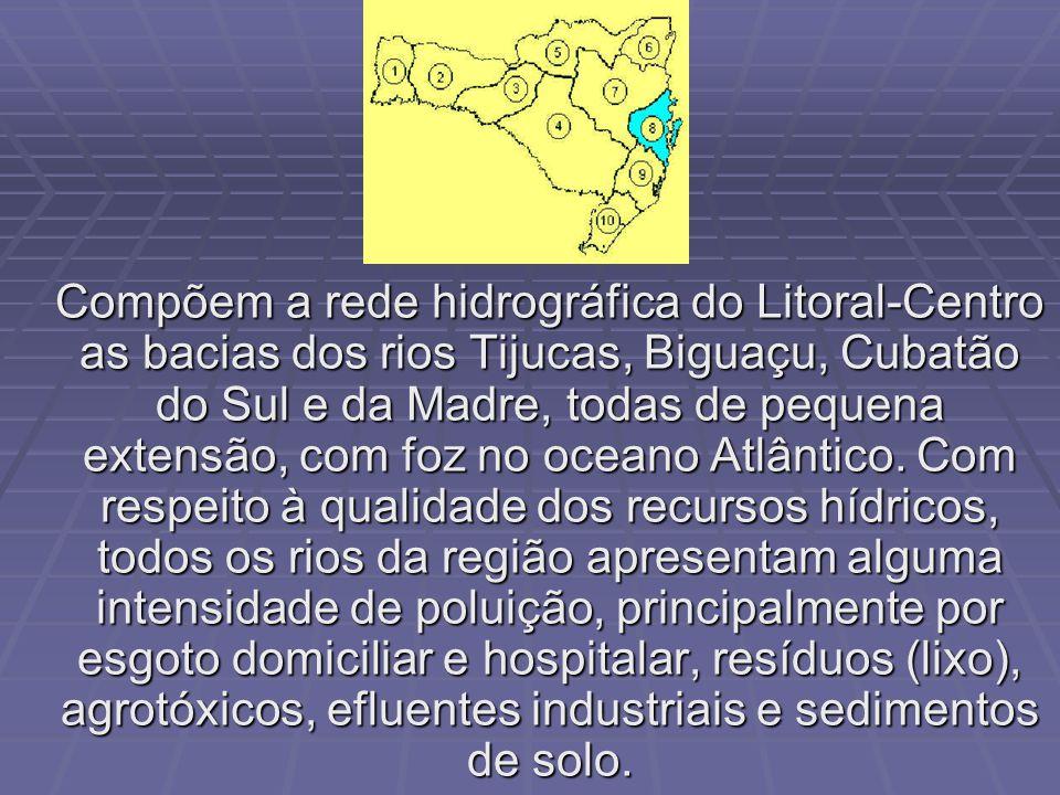 Esta região é composta unicamente pela bacia hidrográfica do rio Itajaí. A ocorrência de enchentes periódicas tem sido o maior problema desta bacia. A