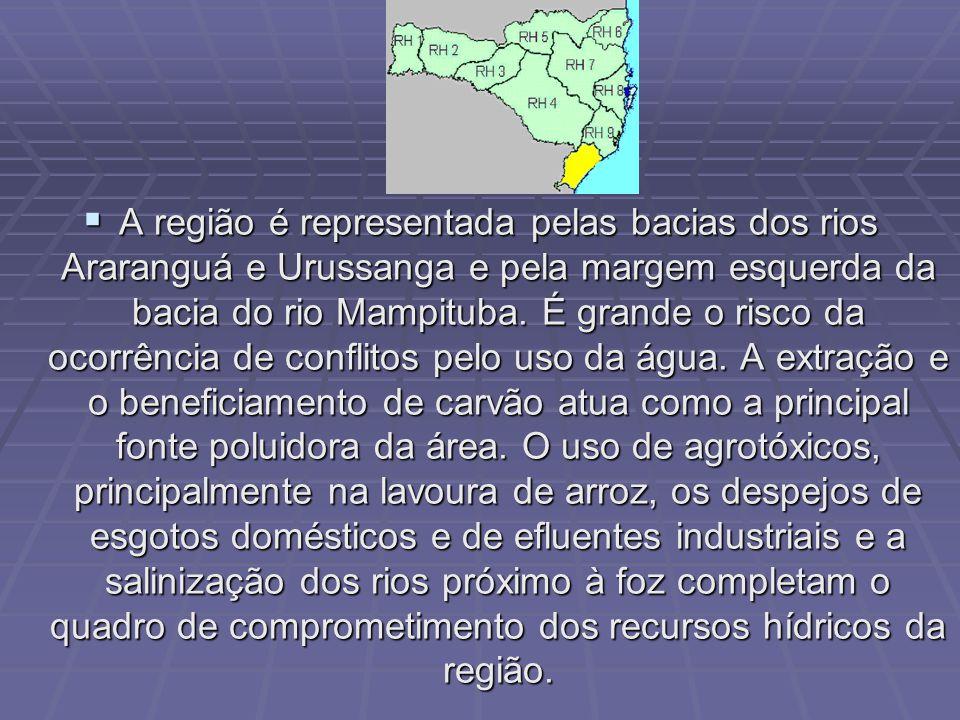 As bacias dos rios Tubarão e DUna drenam a região, cabendo destaque ao complexo lagunar aí existente (lagoas Santo Antônio, Mirim e Imaruí) pela importância socioeconômica que apresenta.