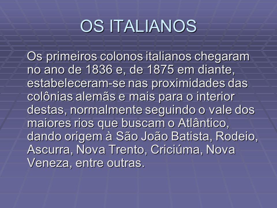 Imigrantes alemães Foi durante o Primeiro Reinado do Brasil, em 1829, que chegaram em Santa Catarina os primeiros alemães dando origem à pioneira cida