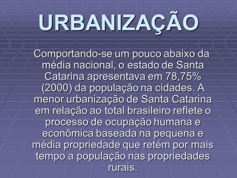 DISTRIBUIÇÃO DA POPULAÇÃO POR ATIVIDADE ECONÔMICA. Santa Catarina tem 55% das pessoas em idade de trabalho ocupadas com algum tipo de atividade com fi