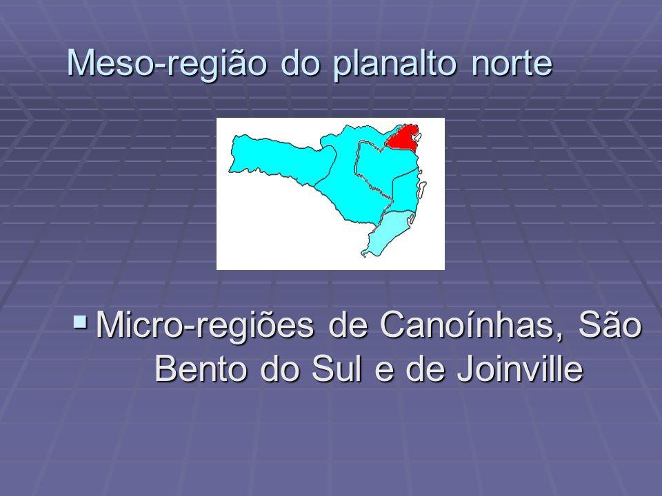 ANALFABETISMO Com a extraordinária taxa de 5,7% de analfabetos Santa Catarina se coloca na condição dos países rotulados como desenvolvidos, sendo aproximadamente metade do que ocorre no território brasileiro.