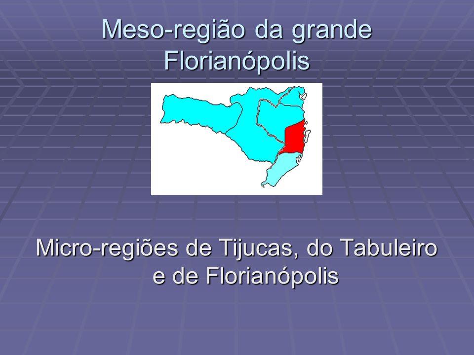 Meso-região do vale do Itajaí Micro-regiões de Rio do Sul, Blumenau, Ituporanga e Itajaí Micro-regiões de Rio do Sul, Blumenau, Ituporanga e Itajaí