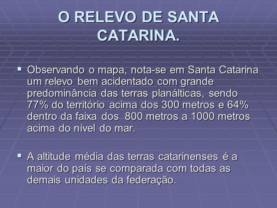 1. Localização: 1. Localização: está localizada na região Sul do Brasil. Área Territorial 2. Área Territorial: 1,1 % do Brasil e 16,57 % da região Sul