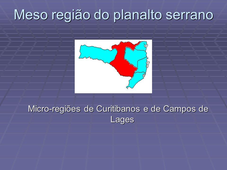 Meso-região sul do estado Micro-regiões de Tubarão, Criciúma e Araranguá Micro-regiões de Tubarão, Criciúma e Araranguá