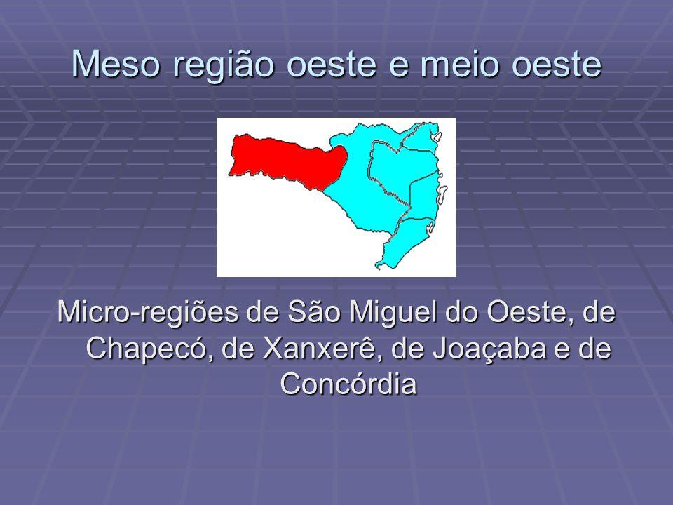 Meso região do planalto serrano Micro-regiões de Curitibanos e de Campos de Lages