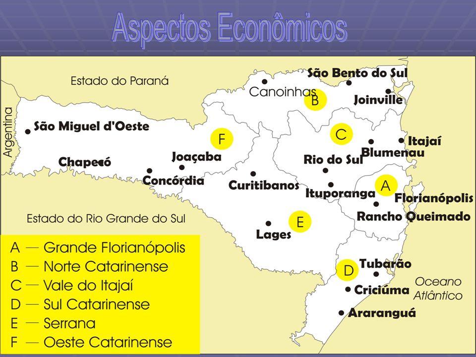 8 - EXTREMO OESTE O setor mais ocidental catarinense é ocupado por São Miguel do Oeste, Chapecó, Xanxerê, Concórdia O setor mais ocidental catarinense