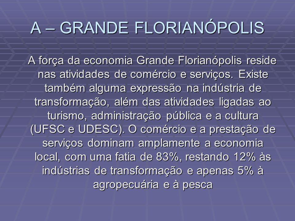 Constituída por pólos de grande importância Nacional Pólo Têxtil / Vestuário Blumenau / Brusque / Jaraguá do Sul / Sul do Estado Principais Empresas :