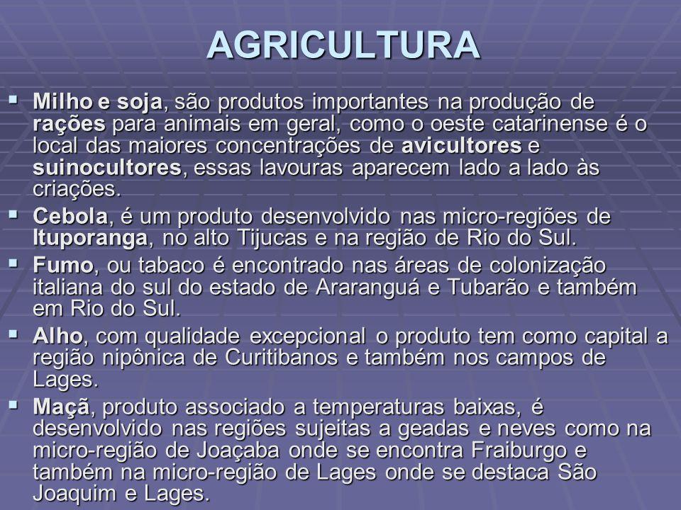 F - OESTE CATARINENSE É marcado principalmente pela agroindústria, que processa grandes quantidades de grãos produzidos, como milho e soja, tanto na produção de alimentos para a população como na de farelos e rações para alimentação animal.