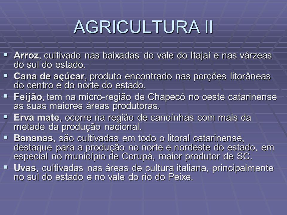 AGRICULTURA Milho e soja, são produtos importantes na produção de rações para animais em geral, como o oeste catarinense é o local das maiores concentrações de avicultores e suinocultores, essas lavouras aparecem lado a lado às criações.