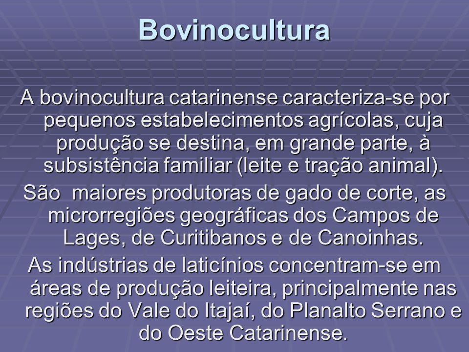 Avicultura catarinense Ocupa lugar de destaque no estado, no Brasil e no mundo, cerca de 2,5% da produção mundial abocanhando 8% dos negócios mundiais de frangos, reconhecida na Europa, no Japão e no Oriente Médio.