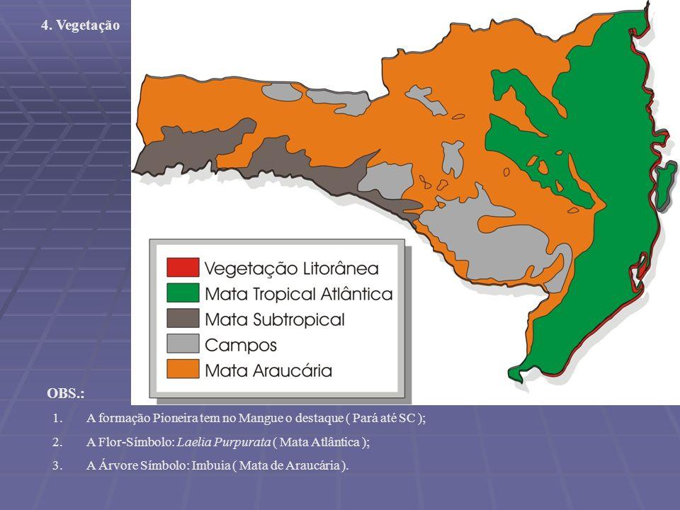 Em Santa Catarina são identificadas 5 grandes formações vegetais: A-Mata Atlântica A-Mata Atlântica B-Mata das Araucárias B-Mata das Araucárias C-Mata Subtropical C-Mata Subtropical D-Os campos herbáceos D-Os campos herbáceos E-As vegetações litorâneas E-As vegetações litorâneas