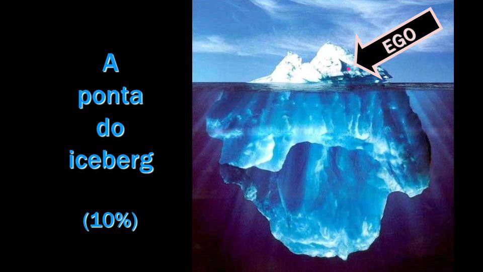Da mesma forma, os ideais de enobrecimento, os anelos de beleza, o hábito das emoções elevadas, a mentalização de planos superiores, as aquisições e lutas humanistas repousam nos departamentos da subconsciência,...
