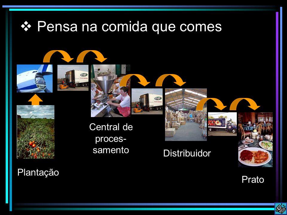 Pensa na comida que comes Central de proces- samento Plantação Distribuidor Prato