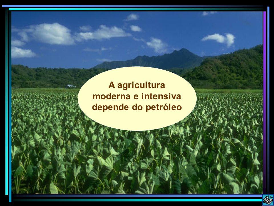 A agricultura moderna e intensiva depende do petróleo