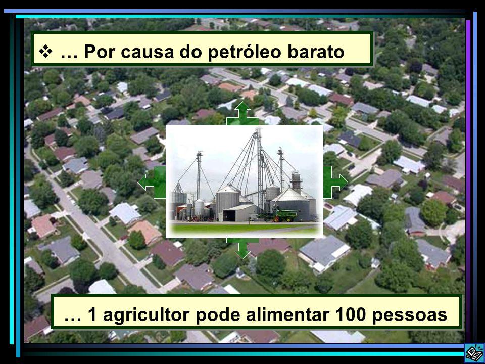… Por causa do petróleo barato … 1 agricultor pode alimentar 100 pessoas