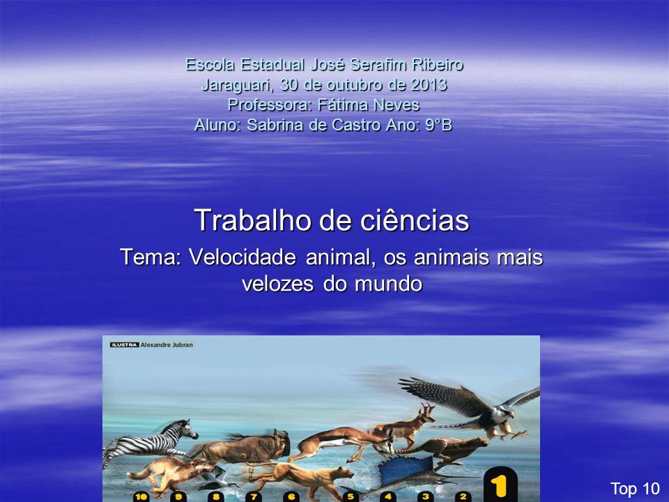 Escola Estadual José Serafim Ribeiro Jaraguari, 30 de outubro de 2013 Professora: Fátima Neves Aluno: Sabrina de Castro Ano: 9°B Trabalho de ciências