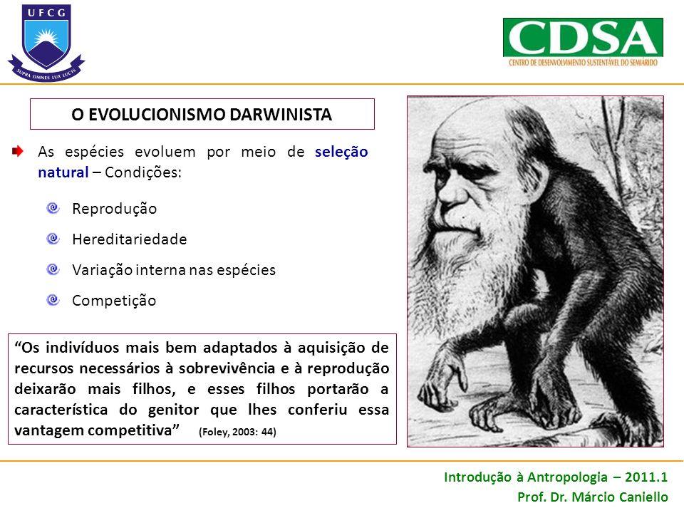 As espécies evoluem por meio de seleção natural – Condições: Reprodução Hereditariedade Variação interna nas espécies Competição O EVOLUCIONISMO DARWI
