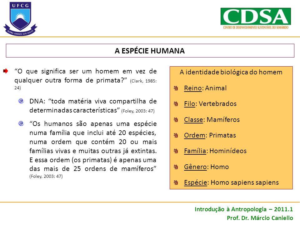 A ESPÉCIE HUMANA O que significa ser um homem em vez de qualquer outra forma de primata? (Clark, 1985: 24) DNA: toda matéria viva compartilha de deter