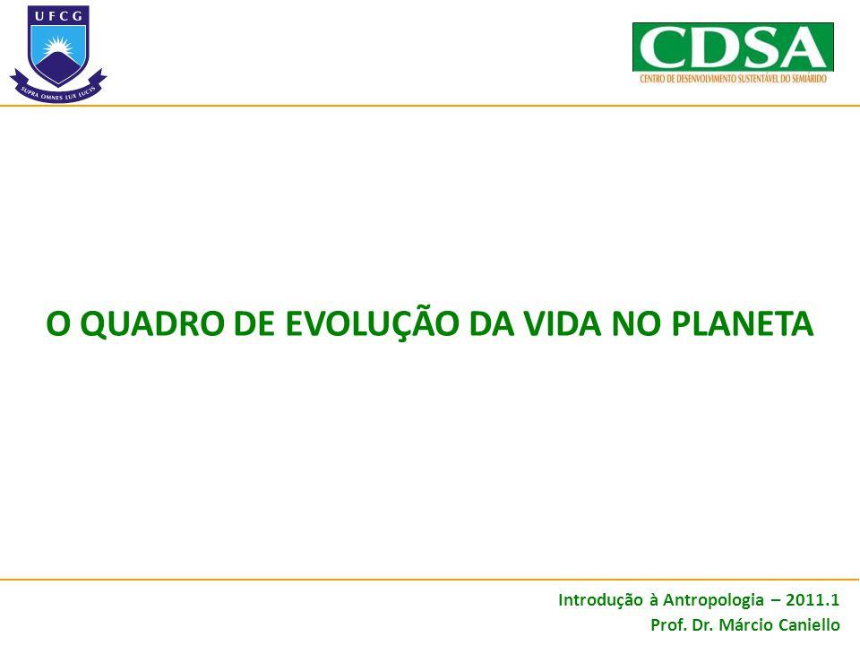 O QUADRO DE EVOLUÇÃO DA VIDA NO PLANETA Introdução à Antropologia – 2011.1 Prof. Dr. Márcio Caniello