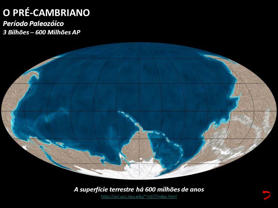 A superfície terrestre há 600 milhões de anos http://jan.ucc.nau.edu/~rcb7/index.html O PRÉ-CAMBRIANO Período Paleozóico 3 Bilhões – 600 Milhões AP