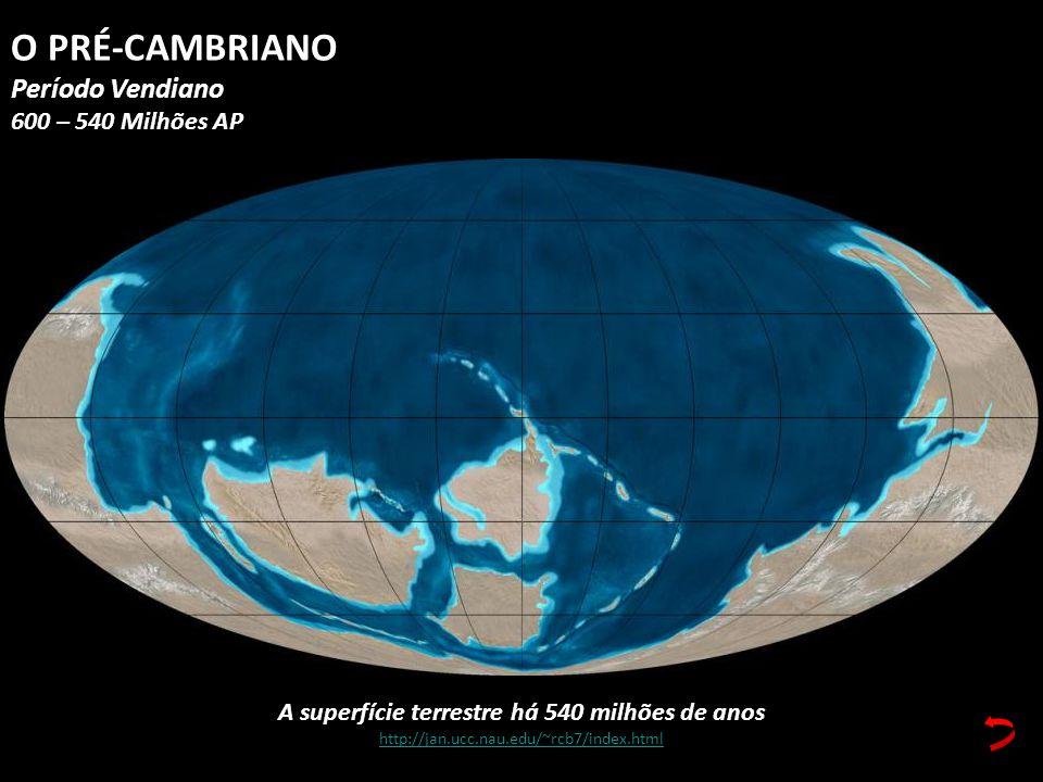 A superfície terrestre há 540 milhões de anos http://jan.ucc.nau.edu/~rcb7/index.html O PRÉ-CAMBRIANO Período Vendiano 600 – 540 Milhões AP