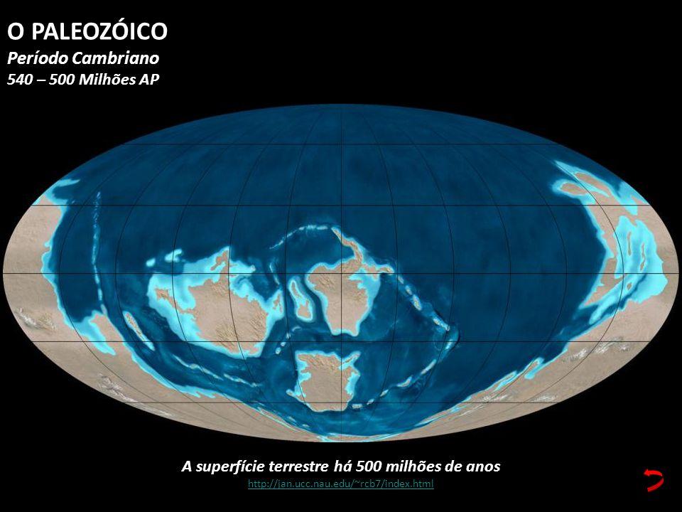 A superfície terrestre há 500 milhões de anos http://jan.ucc.nau.edu/~rcb7/index.html O PALEOZÓICO Período Cambriano 540 – 500 Milhões AP