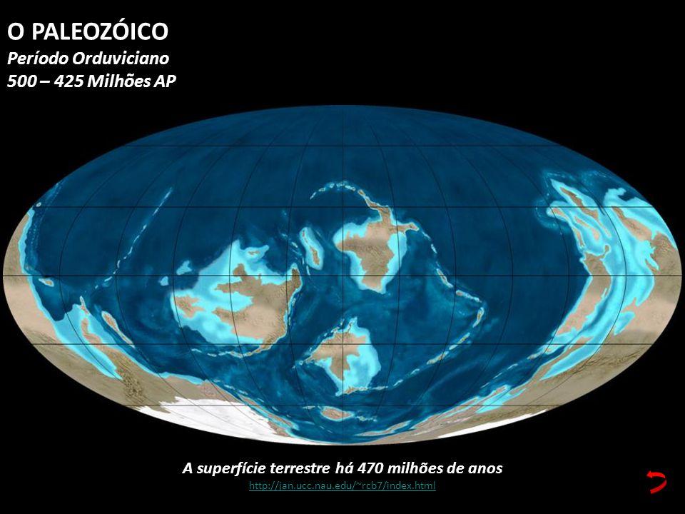 A superfície terrestre há 470 milhões de anos http://jan.ucc.nau.edu/~rcb7/index.html O PALEOZÓICO Período Orduviciano 500 – 425 Milhões AP