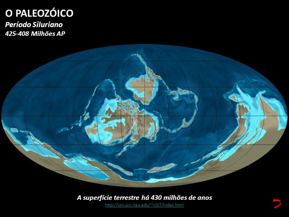 A superfície terrestre há 430 milhões de anos http://jan.ucc.nau.edu/~rcb7/index.html O PALEOZÓICO Período Siluriano 425-408 Milhões AP