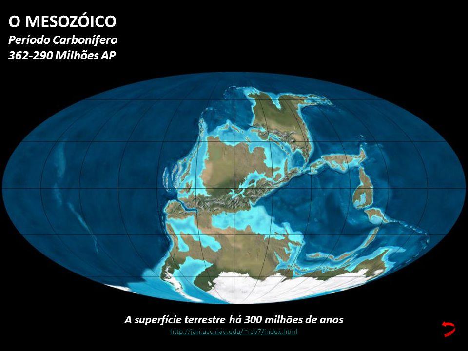 A superfície terrestre há 300 milhões de anos http://jan.ucc.nau.edu/~rcb7/index.html O MESOZÓICO Período Carbonífero 362-290 Milhões AP