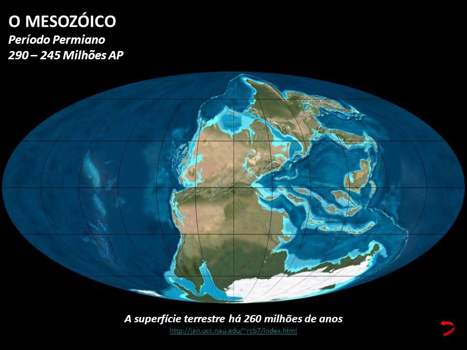 A superfície terrestre há 260 milhões de anos http://jan.ucc.nau.edu/~rcb7/index.html O MESOZÓICO Período Permiano 290 – 245 Milhões AP