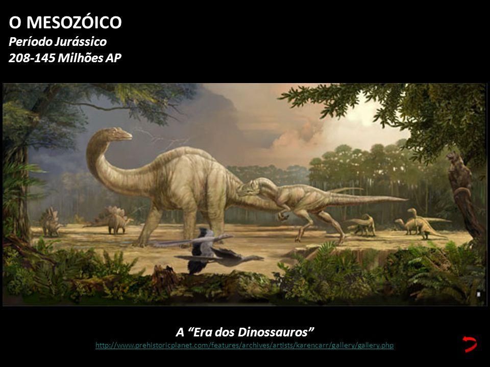 O MESOZÓICO Período Jurássico 208-145 Milhões AP A Era dos Dinossauros http://www.prehistoricplanet.com/features/archives/artists/karencarr/gallery/ga