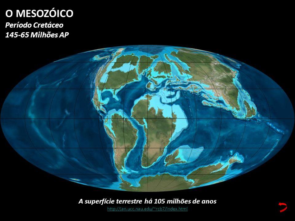 A superfície terrestre há 105 milhões de anos http://jan.ucc.nau.edu/~rcb7/index.html O MESOZÓICO Período Cretáceo 145-65 Milhões AP