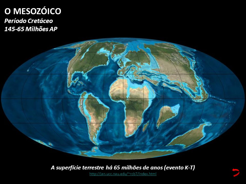 A superfície terrestre há 65 milhões de anos (evento K-T) http://jan.ucc.nau.edu/~rcb7/index.html O MESOZÓICO Período Cretáceo 145-65 Milhões AP
