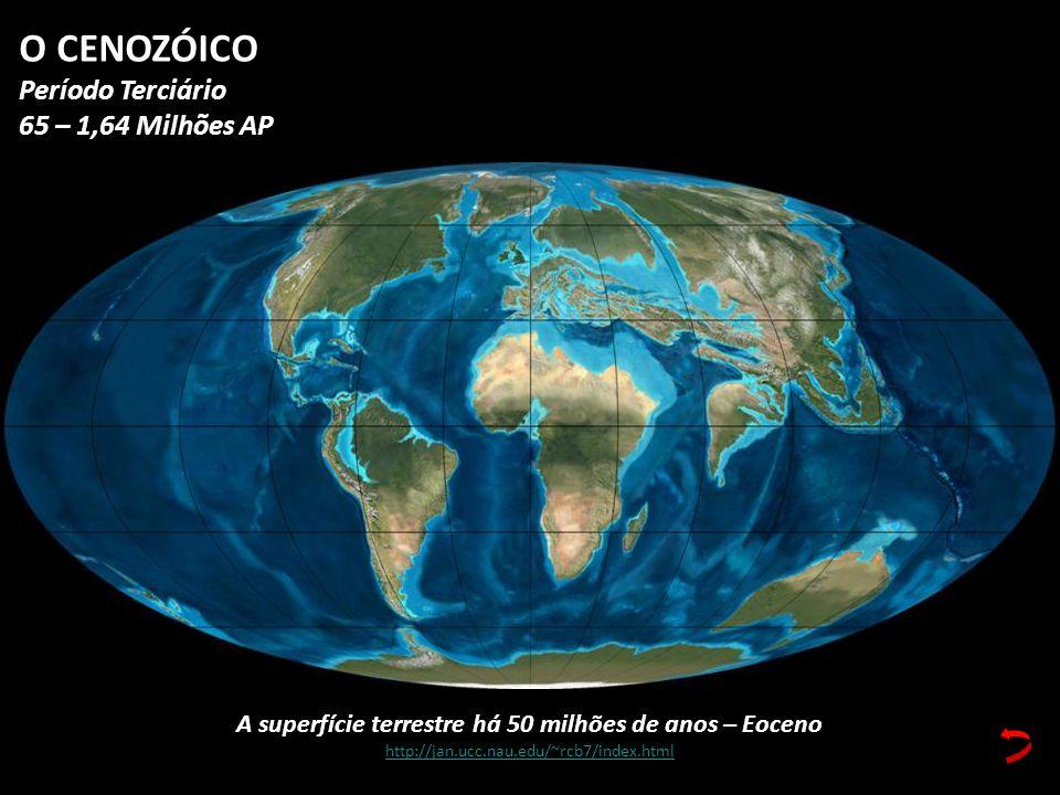 A superfície terrestre há 50 milhões de anos – Eoceno http://jan.ucc.nau.edu/~rcb7/index.html O CENOZÓICO Período Terciário 65 – 1,64 Milhões AP