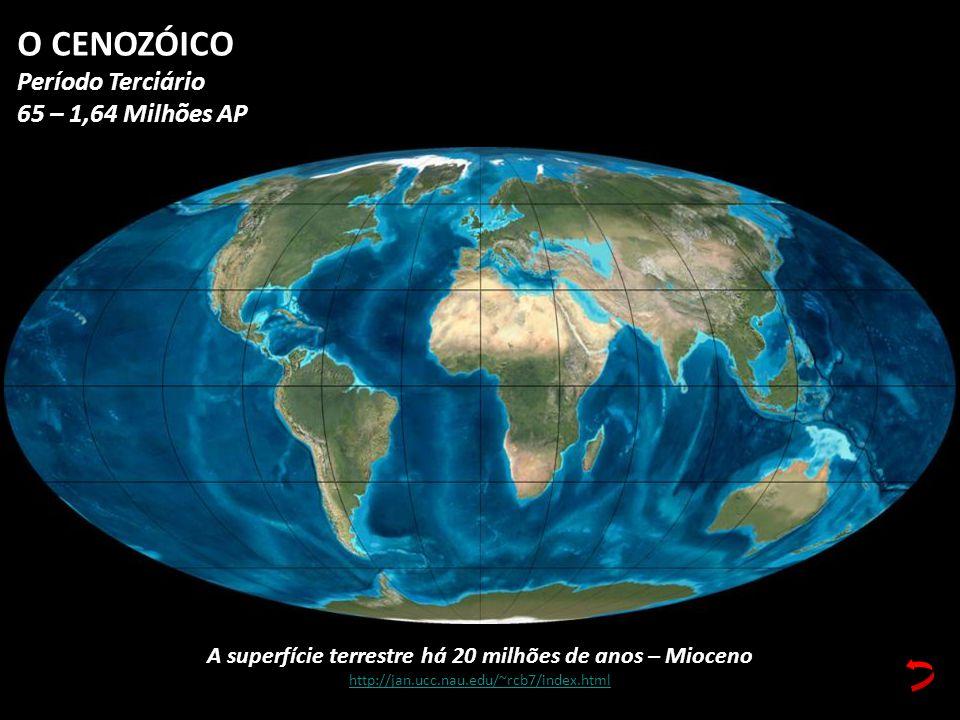 A superfície terrestre há 20 milhões de anos – Mioceno http://jan.ucc.nau.edu/~rcb7/index.html O CENOZÓICO Período Terciário 65 – 1,64 Milhões AP