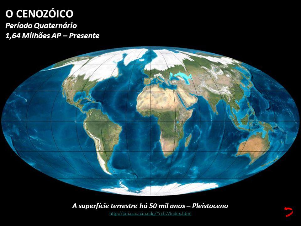 A superfície terrestre há 50 mil anos – Pleistoceno http://jan.ucc.nau.edu/~rcb7/index.html O CENOZÓICO Período Quaternário 1,64 Milhões AP – Presente