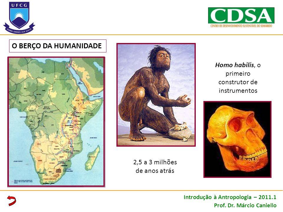 O BERÇO DA HUMANIDADE Homo habilis, o primeiro construtor de instrumentos 2,5 a 3 milhões de anos atrás Introdução à Antropologia – 2011.1 Prof. Dr. M