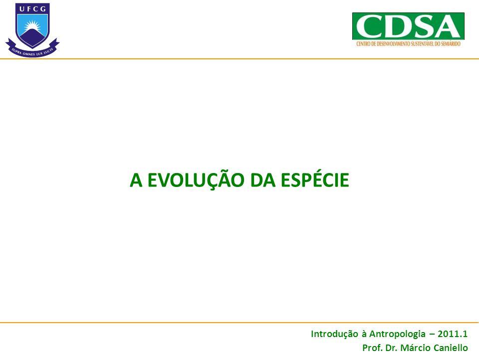 Introdução à Antropologia – 2011.1 Prof. Dr. Márcio Caniello A EVOLUÇÃO DA ESPÉCIE