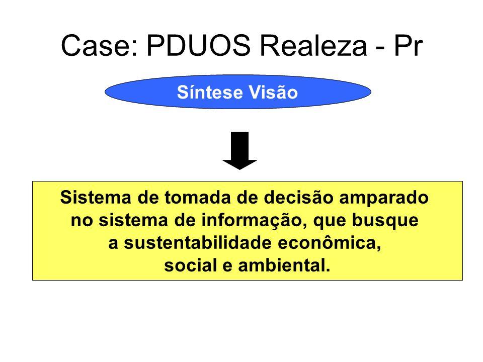 Case: PDUOS Realeza - Pr Síntese Visão Sistema de tomada de decisão amparado no sistema de informação, que busque a sustentabilidade econômica, social