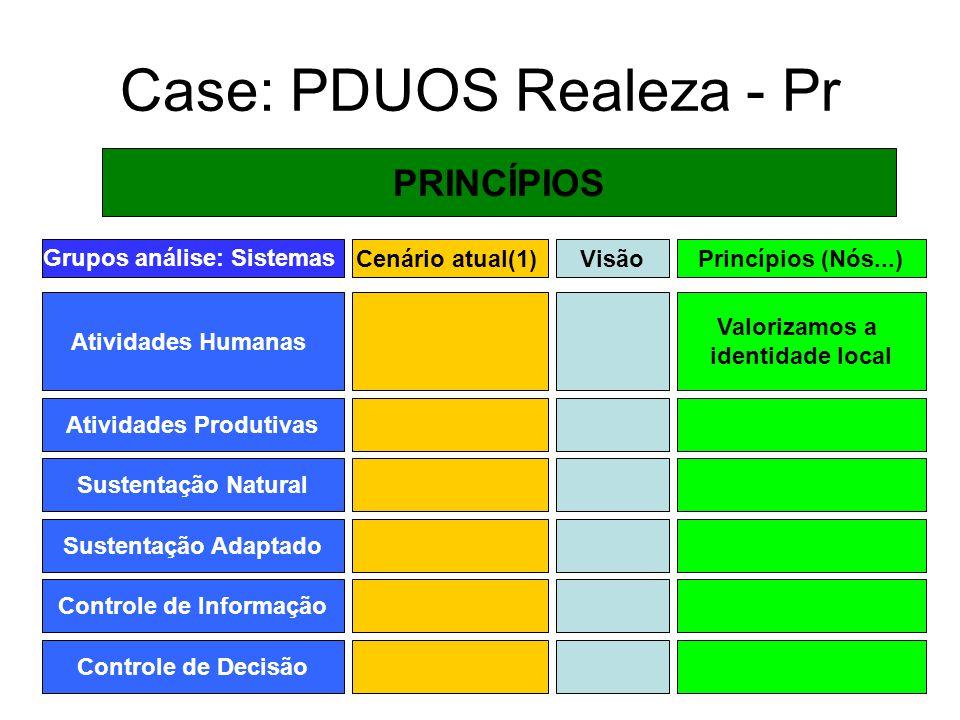 Case: PDUOS Realeza - Pr PRINCÍPIOS Grupos análise: Sistemas Atividades Humanas Cenário atual(1) Atividades Produtivas Sustentação Natural Sustentação
