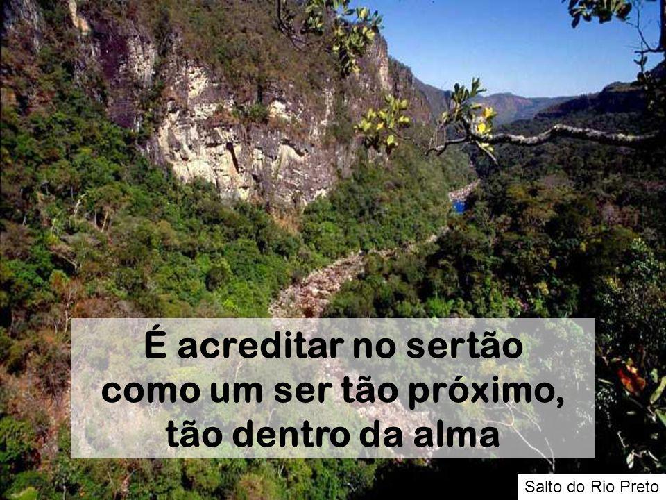Salto do Rio Preto É acreditar no sertão como um ser tão próximo, tão dentro da alma