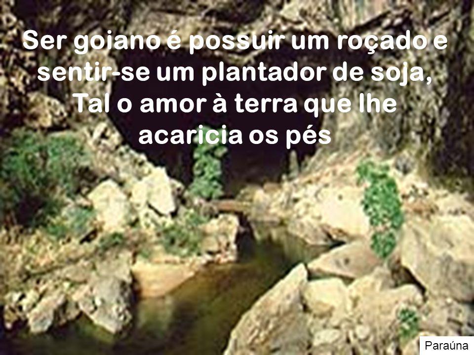 Paraúna Ser goiano é possuir um roçado e sentir-se um plantador de soja, Tal o amor à terra que lhe acaricia os pés