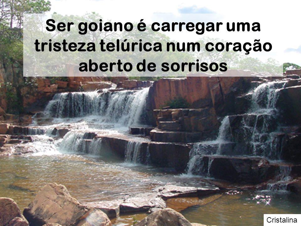 Rio Araguaia O goiano histórico sabe que o Araguaia não passa de um corgo, tal a familiaridade com os rios