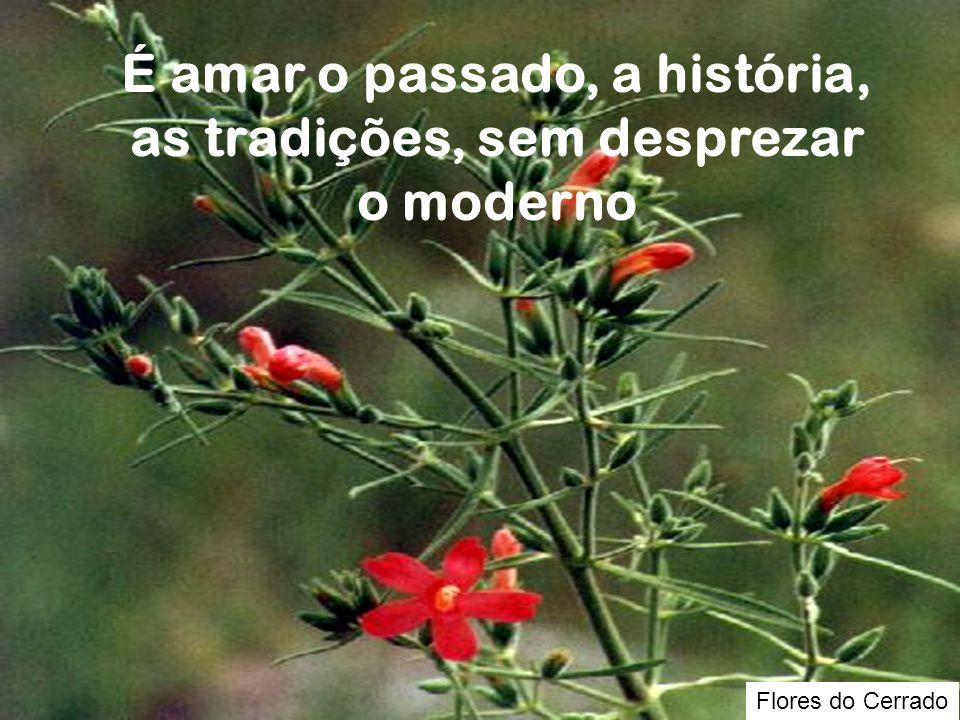 Flores do Cerrado É amar o passado, a história, as tradições, sem desprezar o moderno