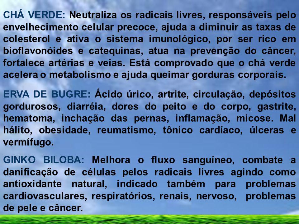 CHÁ VERDE: Neutraliza os radicais livres, responsáveis pelo envelhecimento celular precoce, ajuda a diminuir as taxas de colesterol e ativa o sistema